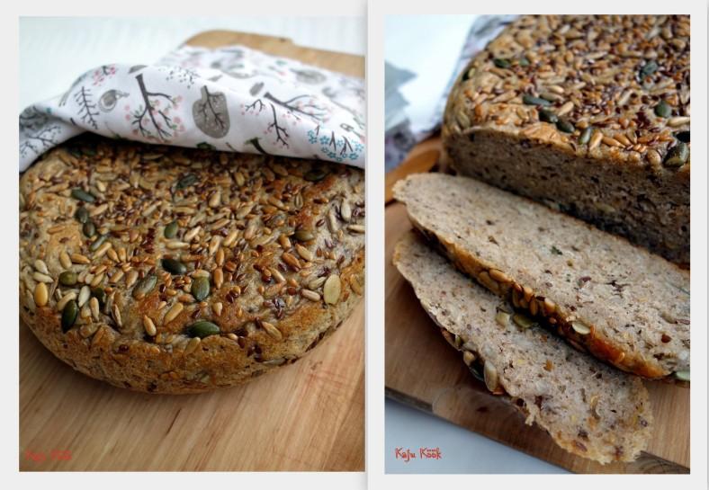 Redmond - leib